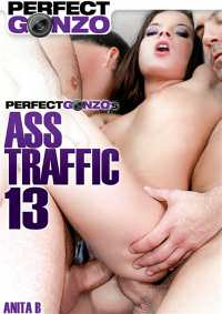 Жопный Траффик 13 / Ass Traffic 13 (2016) WEB-DL